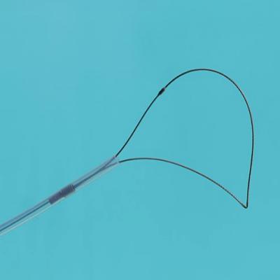 可旋转内窥镜电圈套器胃镜肠镜消化道息肉切除器勒除器