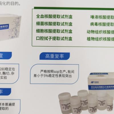 核酸提取纯化试剂盒