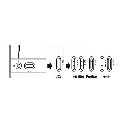 三聚氰胺快速检测试剂盒(免疫胶体金法)
