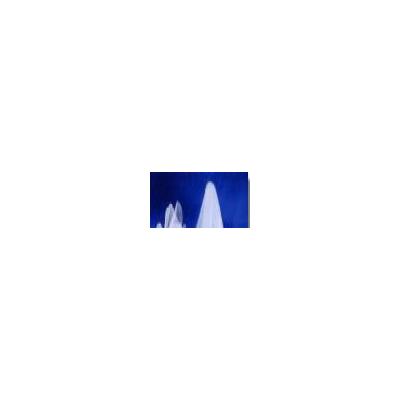 美国巴德疝气补片(疝环充填补片)