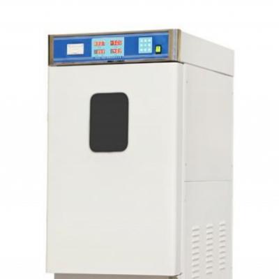 手动立式80升环氧乙烷灭菌柜整形医院灭菌器腔镜消毒柜