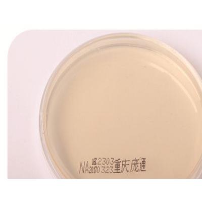 营养琼脂培养基(院感检测、环境检测、沉降菌检测、薄膜过滤法)